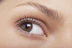 美丽的妇女的眼睛 免版税库存图片