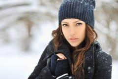 美丽的妇女面孔在冬天 免版税库存照片