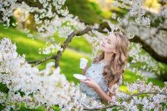美丽的妇女饮用的茶在樱桃庭院里 免版税库存照片
