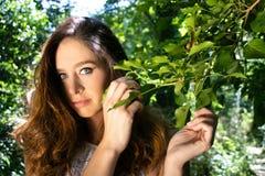 美丽的妇女,夫人,有蓝眼睛和棕色头发姿势的在树旁边绿色叶子  库存图片