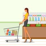 美丽的妇女购物杂货 免版税库存照片