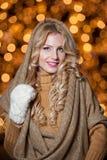 年轻美丽的妇女画象有长的公平的头发的室外在一个冷的冬日。冬天衣裳的美丽的白肤金发的女孩 库存图片