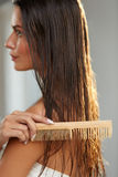 美丽的妇女Hairbrushing她长的湿头发 护发 库存照片