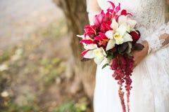 美丽的婚礼花束在新娘的手上 库存照片