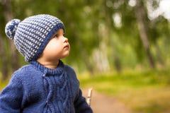 美丽的婴孩通过森林走,周道地调查距离;在它附近是树和绿色叶子, weathe 库存照片