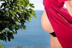 美丽的孕妇和夫人是拥抱和握她怀孕的腹部,站立在自然环境里 等待的婴孩 免版税库存照片