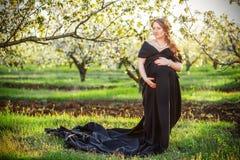 美丽的孕妇在充分的growt的豪华的春天庭院里 库存照片