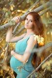 美丽的孕妇在庭院里 免版税库存图片