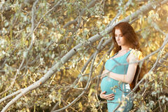美丽的孕妇在庭院里 库存照片