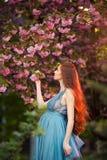 美丽的孕妇在开花的庭院里 免版税库存图片