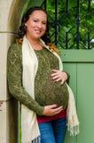 美丽的孕妇 免版税库存图片