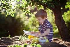 美丽的孩子男孩,读一本书在庭院里,坐在t旁边 免版税库存图片