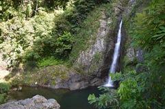 美丽的密林瀑布Doña胡安娜 免版税图库摄影