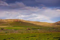 美丽的富有的绿色草甸和牧场地天空的与云彩 库存图片