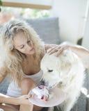 美丽的对狗的妇女哺养的蛋糕在房子里 免版税库存图片