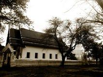美丽的寺庙在阿尤特拉利夫雷斯泰国 图库摄影