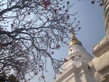 美丽的寺庙 库存照片