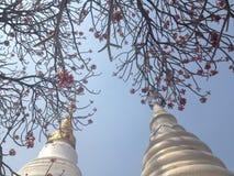 美丽的寺庙 免版税库存图片