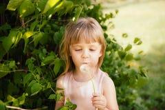 美丽的小女孩吹的蒲公英户外在夏天 库存照片