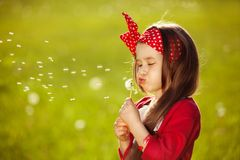 美丽的小女孩吹的蒲公英 免版税库存图片
