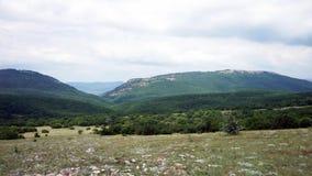 美丽的小山和森林全景 股票录像