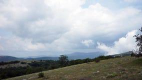 美丽的小山和森林全景 股票视频