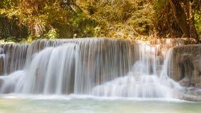 美丽的小河瀑布在深森林密林 免版税图库摄影