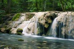 美丽的小河瀑布在深绿森林里 免版税库存图片