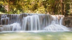 美丽的小河水在深森林里落 免版税库存图片