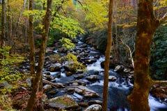 美丽的小瀑布在大烟山 免版税图库摄影