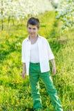 美丽的小男孩在一个开花的庭院里在春天 库存照片