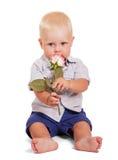 美丽的小男孩是坐和拿着玫瑰被隔绝 免版税库存照片