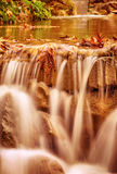 美丽的小的瀑布在森林里 库存图片