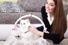 美丽的少妇和波斯白色猫在家 库存图片