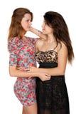美丽的少妇和他们的友谊 免版税库存图片