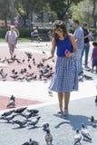 美丽的少妇哺养的鸽子在巴塞罗那,西班牙 图库摄影
