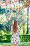 美丽的少妇在开花的春天公园 库存照片