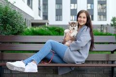 美丽的少妇坐长木凳和享用与她逗人喜爱的矮小的多壳的小狗 免版税库存照片