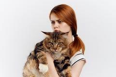 美丽的少妇拿着在轻的背景,情感,画象的一只猫 免版税图库摄影