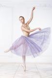 美丽的少妇芭蕾舞女演员 库存照片