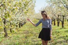美丽的少妇画象在苹果树开花的公园在一个晴天 微笑的女孩愉快的女孩 背景五颜六色的概念幸福在白色上写字 免版税库存照片