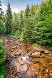美丽的山小河在一个晴朗的夏日 库存照片