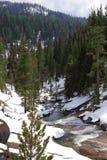 美丽的山小河在冬天 免版税库存图片