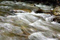 美丽的山小河细节  免版税库存照片