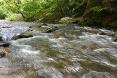 美丽的山小河细节  图库摄影