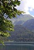 美丽的山湖通过树的冠 库存照片