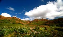 美丽的山谷 库存图片
