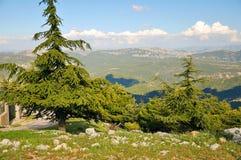 美丽的山 库存图片