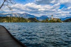 美丽的布莱德湖斯洛文尼亚 免版税图库摄影