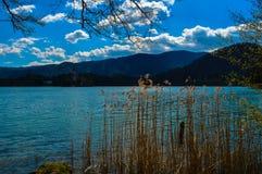 美丽的布莱德湖,斯洛文尼亚 免版税图库摄影